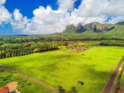 Aliomanu Estates land - aerial mountain view