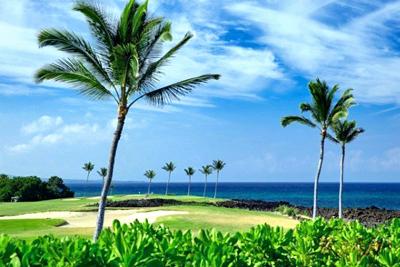 Halii Kai Condo - golf course