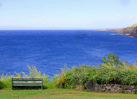 Maui Homes and Condos For Sale-7