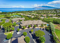 Maui Homes and Condos For Sale-4